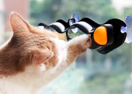 3 Kanallı Vantuzlu Kedi Oyun Tüneli