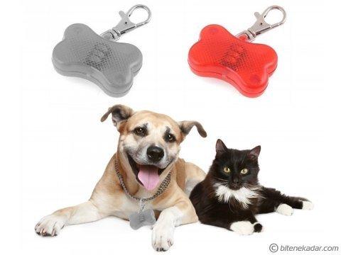 Kedi ve Köpekler için Tasma Işığı - Gece Yürüyüşleri İçin