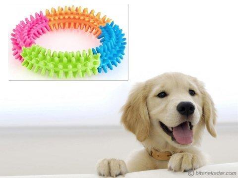 Köpek Diş Temizleyici Oyuncak