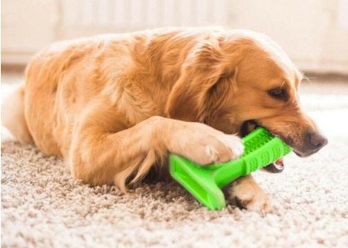 Köpek Diş Temizleyici Oyuncak Büyük