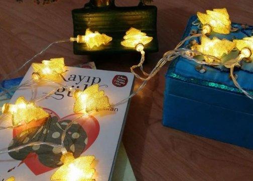Metal Örgülü Çam Ağacı Günışığı Led Işık Zinciri