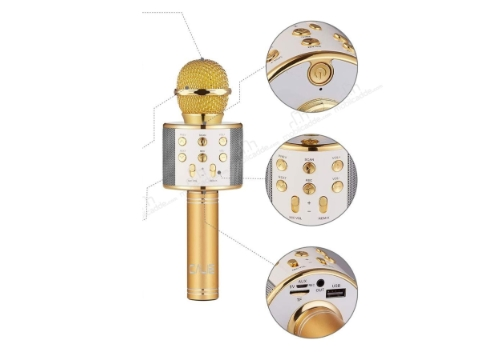 Şarj Edilebilir Telefon Ve Usb Bağlantılı Karaoke Mikrofon (Gold)