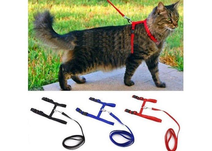Ayarlanabilir Kedi Tasması 120 cm