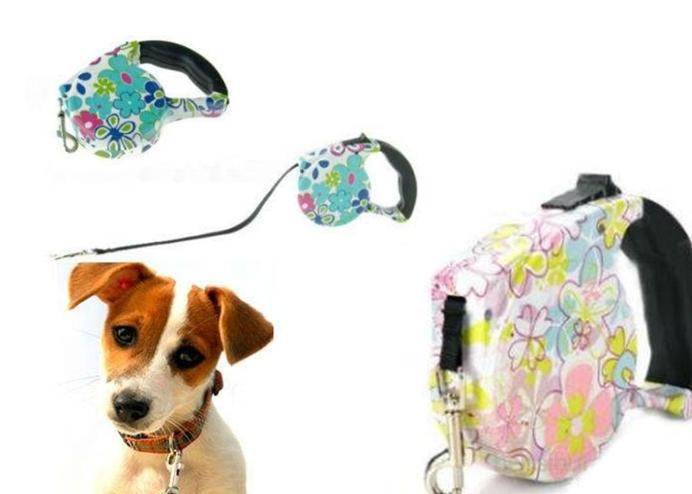 Desenli Otomatik Köpek Tasması: Pup Style