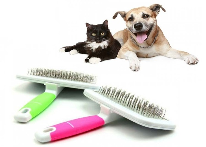 Evcil Hayvan Tarama Fırçası: Telli Fırça