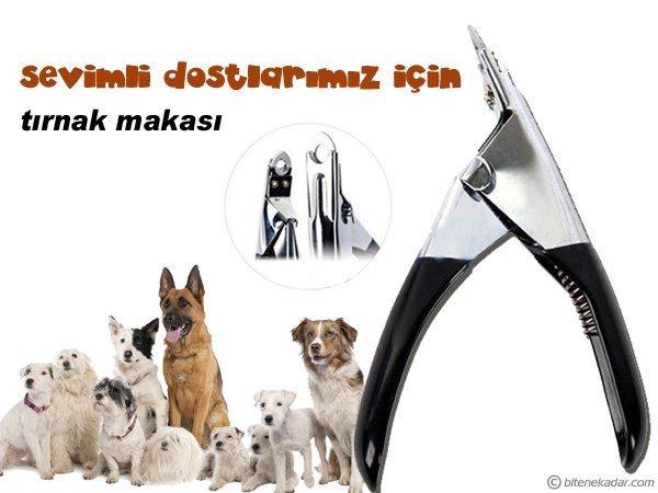 Evcil Hayvan Tırnak Makası