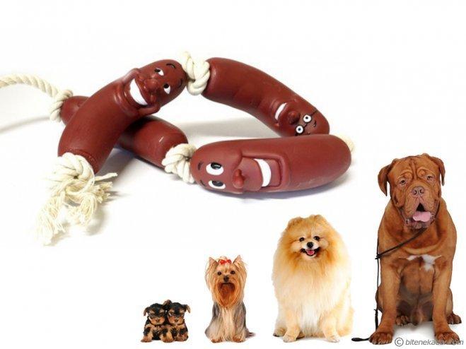 Köpekler İçin Oyuncak Sosis