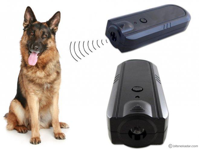 Ultrasonik Köpek Kovucu: Köpek Savar